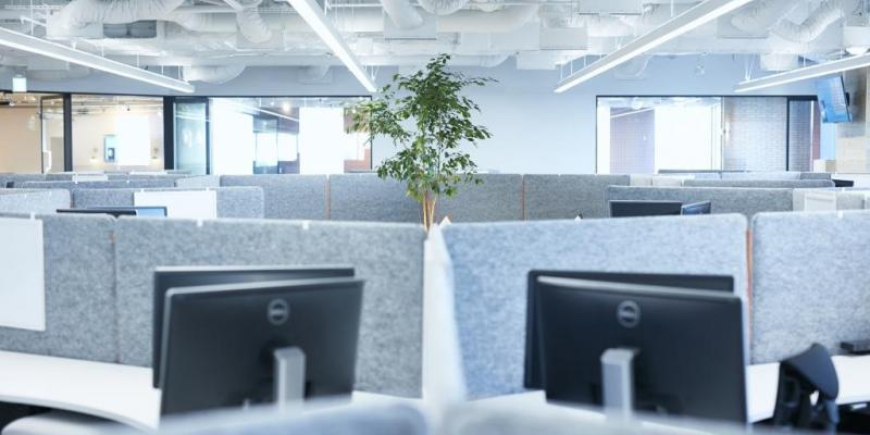 Tree view workstations